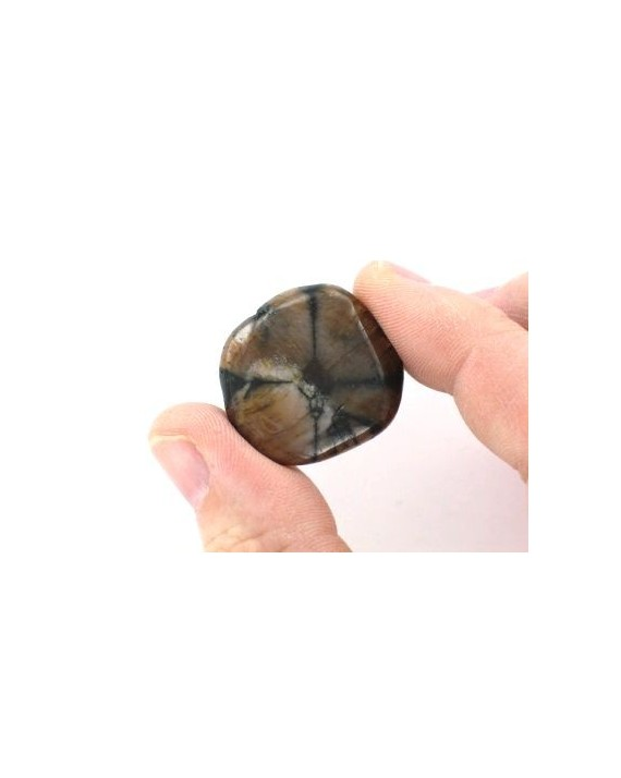 Chiastolite - Pierre plate